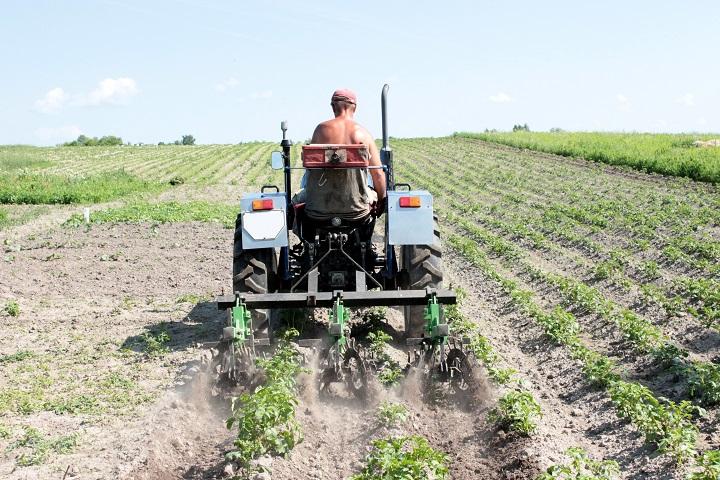 Traktor sprøjter ukrudtsmiddel over en mark