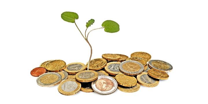 En plante vokser op af euro.