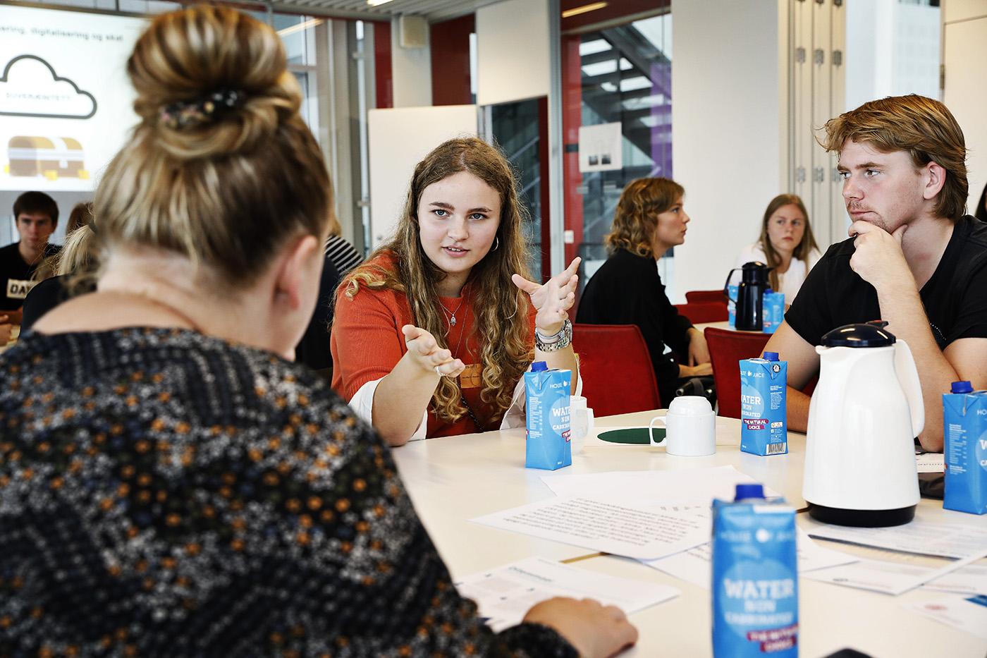 Tirsdag den 11. september 2018 blev der diskuteret globalisering og klima i Alsion i Sønderborg. Det inviterede panel bestod af 80 unge mellem 18 og 25 år.